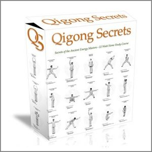 Shaolin Qigong Secrets